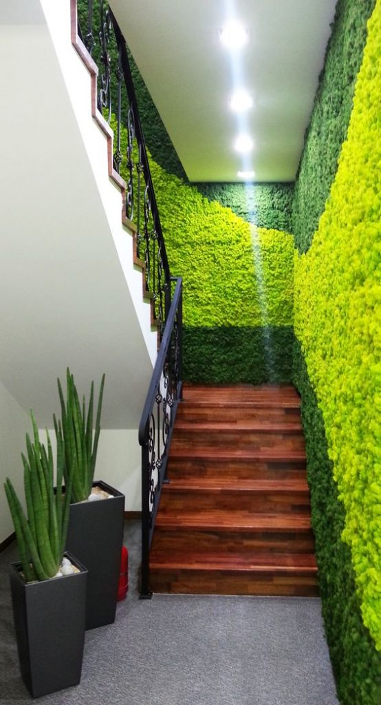 Moss Tiles For Interior Walls Engineering Feed