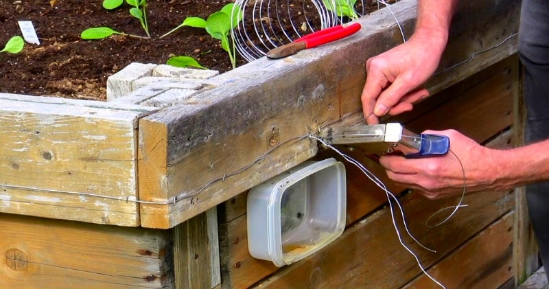 How To Make A 9volt Electric Snail Slug Fence Keep Slugs Out Of Your Garden Beds Engineering Feed
